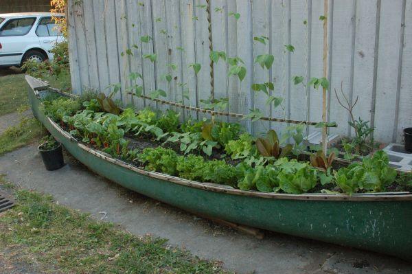 Una canoa para decorar 10
