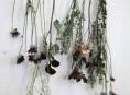 imagen Decorar con flores secas al estilo vintage