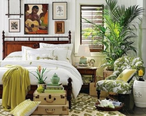 Decoración de estilo tropical 5
