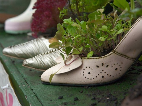 Zapatos convertidos en macetas para decorar - Ideas para decorar zapatos de nina ...