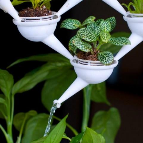 Aquaduct la jardinera 3D 2