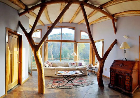Rboles y ramas para decorar el interior - The cob house the beauty of simplicity ...