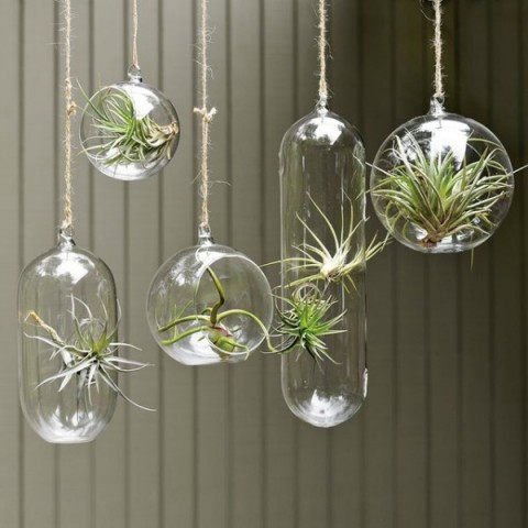 ingeniosas-decoraciones-interior-con-plantas-05