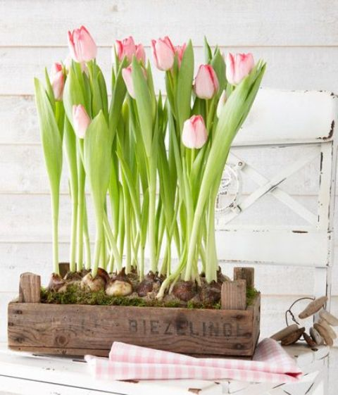 Decorar con tulipanes 12