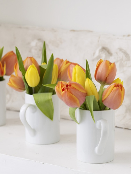 Decorar con tulipanes 2