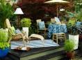 imagen 12 formas de revivir tu patio