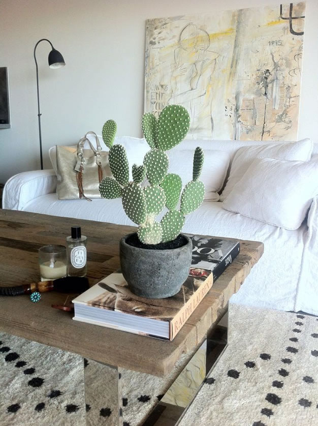 Decoracion de interiores p gina 3 de 324 gu a para decorar for Cactus para interior