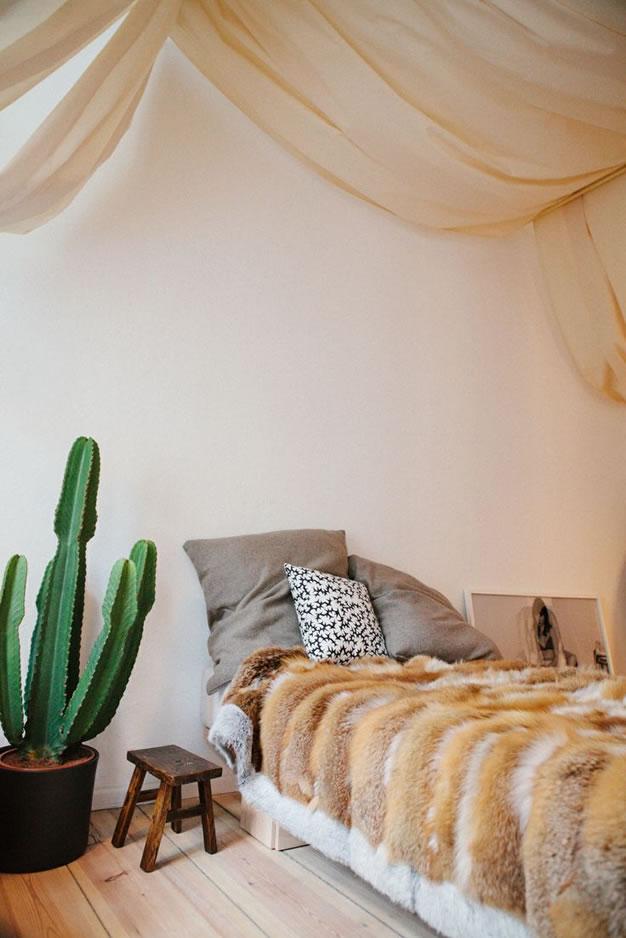 Cactus y terrarios 12
