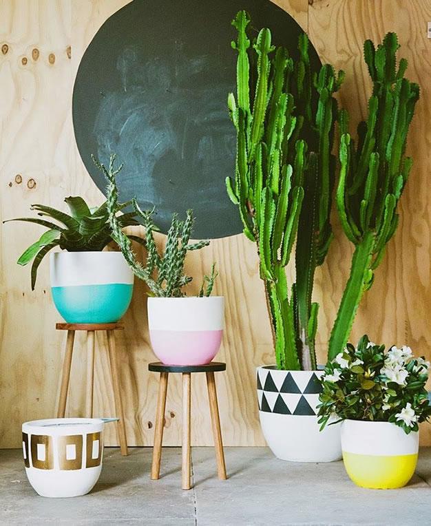 30 ideas para decorar con cactus y terrarios for Cactus para interior