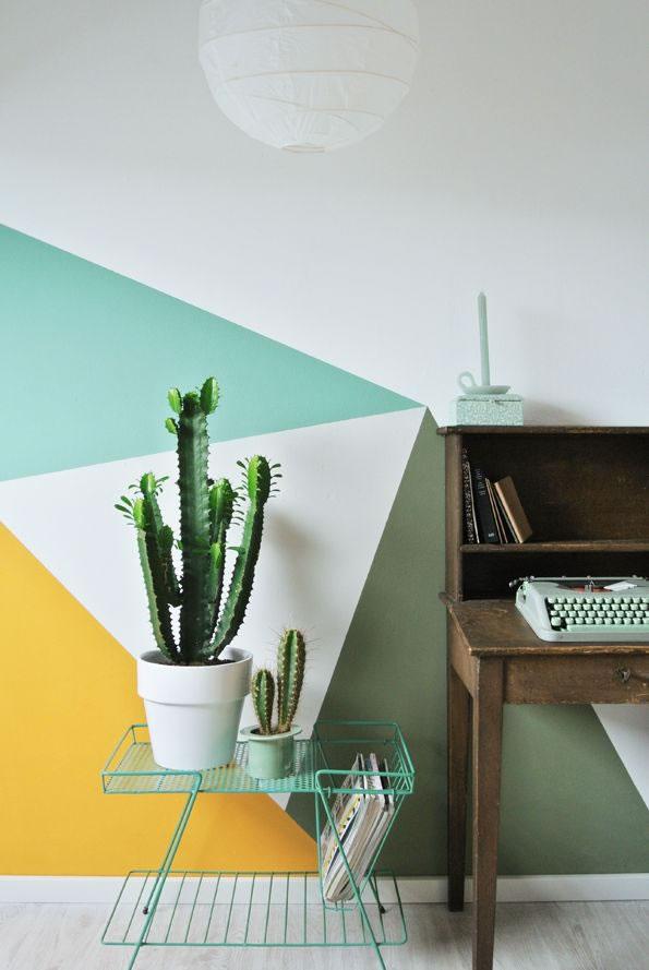 Cactus y terrarios 17