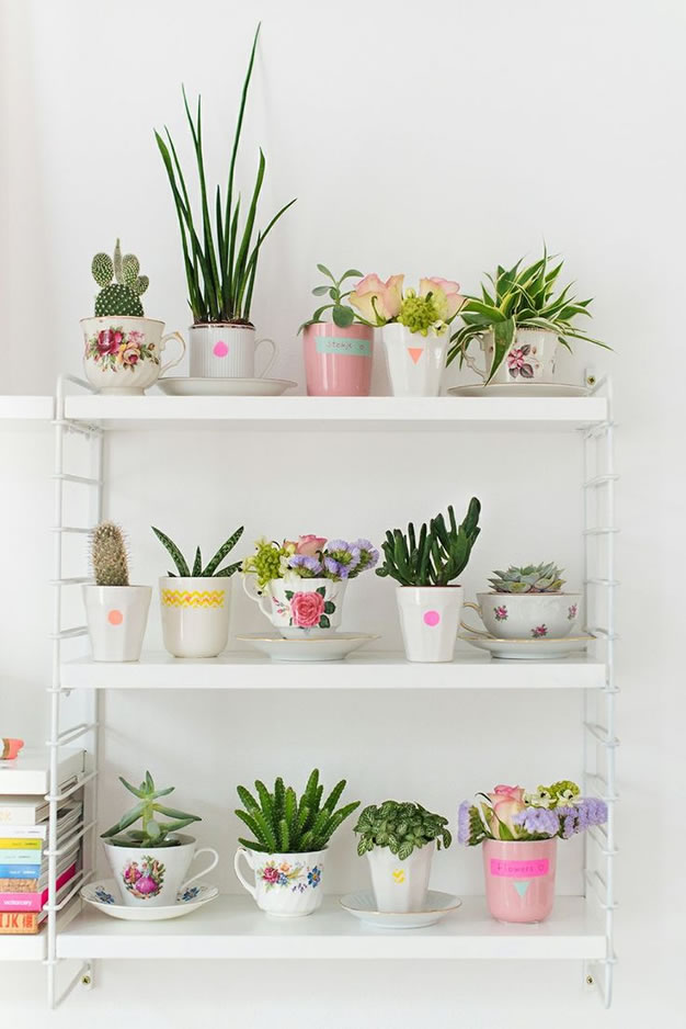 30 ideas para decorar con cactus y terrarios for Ideas lindas para decorar la casa