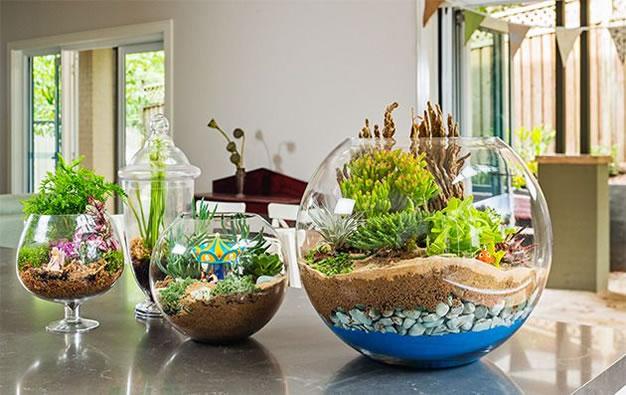 30 ideas para decorar con cactus y terrarios - Decoracion para terrarios ...