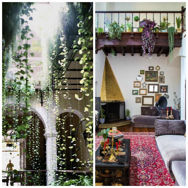 Jardines Colgantes Para Tu Hogar - Plantas-colgantes-de-interior