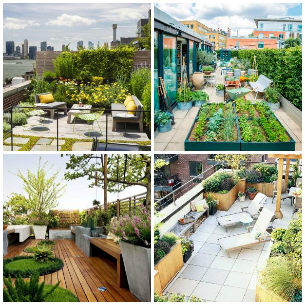 Crea un jard n en tu terraza for Crea tu jardin