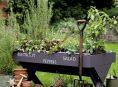 imagen Ideas DIY sencillas para crear tu jardín de hierbas