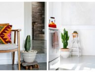 imagen 14 formas de añadir color y textura con cactus