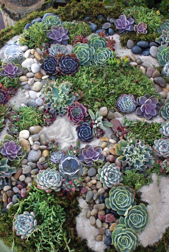 Ideas para decorar tu jard n con piedras y rocas for Ideas para tu jardin paisajismo