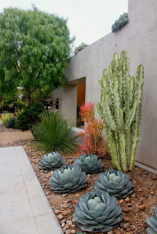 decora tu jardin con piedras y rocas 04 gu a para decorar