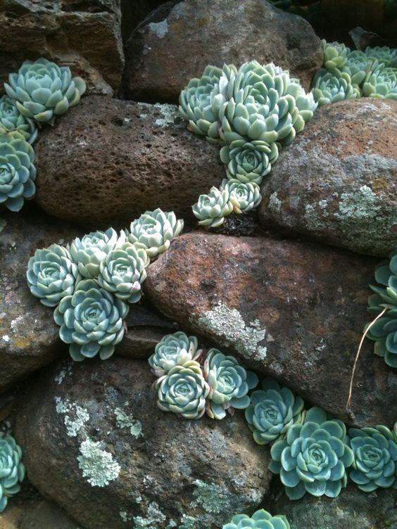 Ideas para decorar tu jard n con piedras y rocas for Decorar mi jardin con piedras