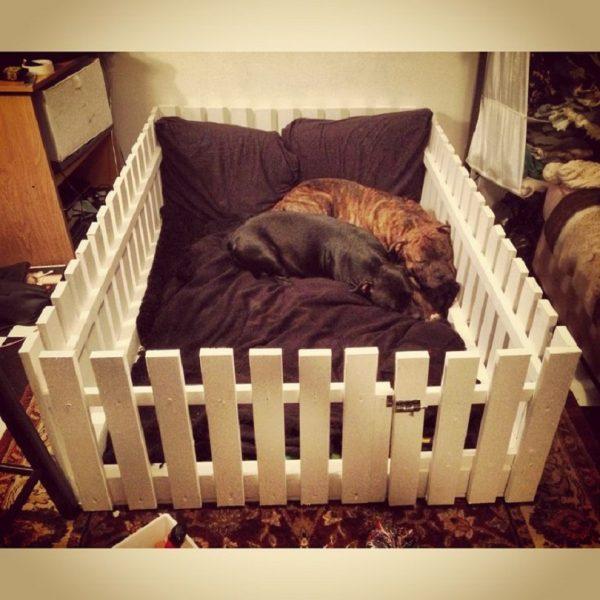 15 camas para mascotas hechas con objetos reciclados