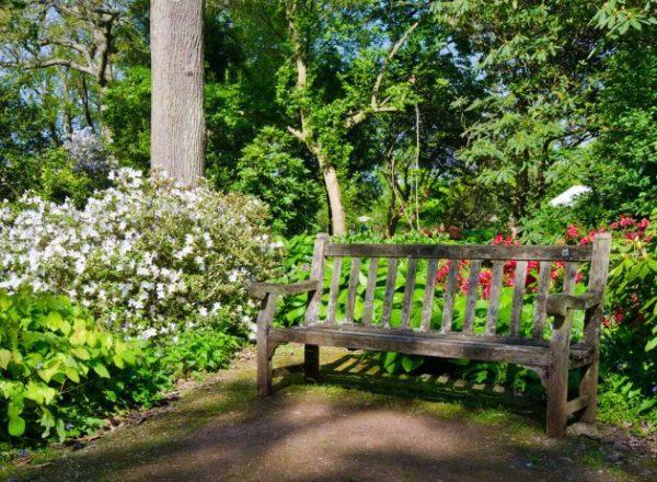 18 ideas para elegir el banco de jard n ideal for El jardin acordes