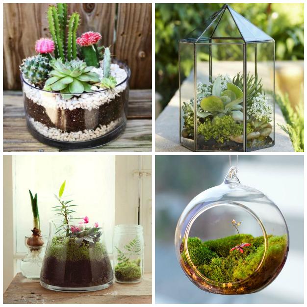 18 jardines en miniatura para decorar toda tu casa for Plantas de jardin interior