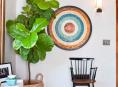 imagen Cómo decorar con plantas de interior grandes