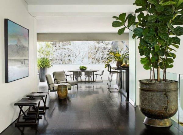 si has decidido decorar tu casa con una gran planta de interior debes pensar tambin en elegir la maceta adecuada puede ser antigua o con un montn de