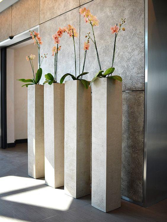 C mo decorar con plantas de interior grandes - Plantas interior grandes ...