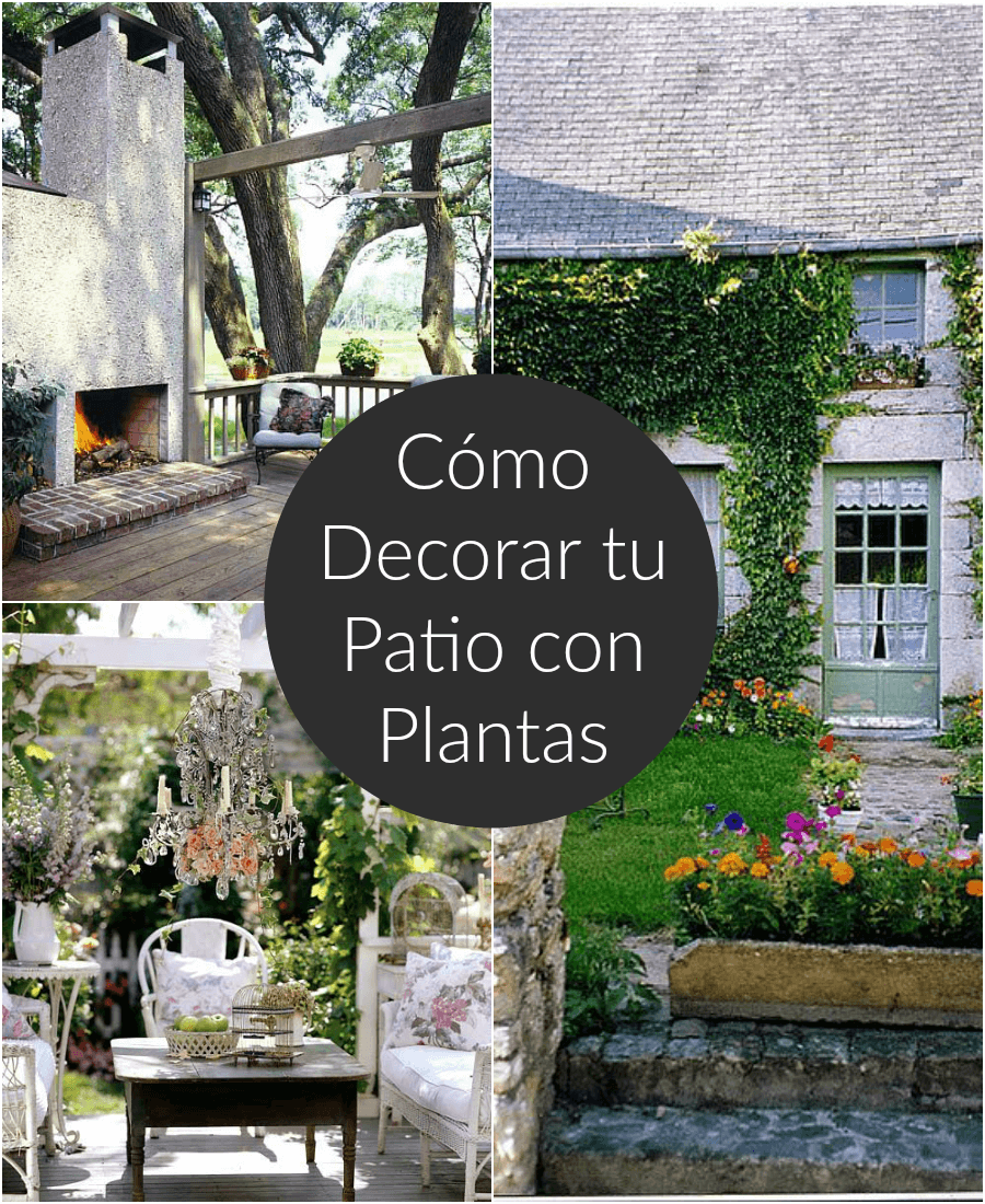 Ideas para decorar un patio peque o con plantas modern for Adornos de jardin