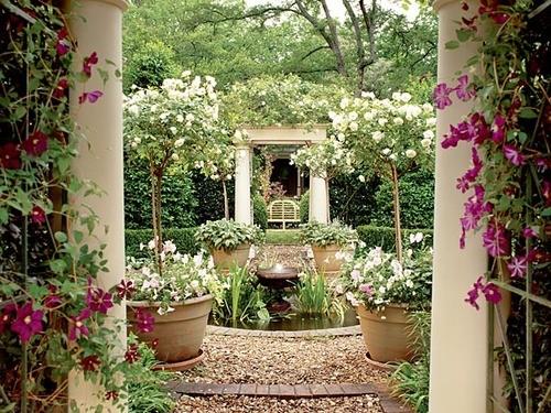 Decora tu patio o terraza con plantas 04 gu a para decorar - Decora tu terraza ...
