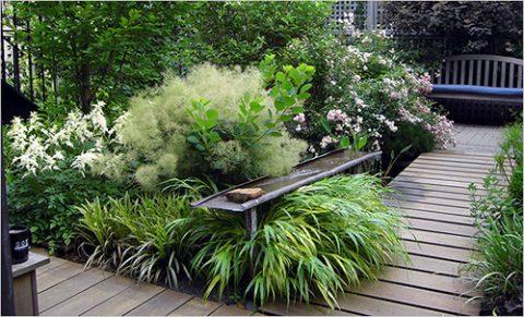 Decora tu patio o terraza con plantas 05 gu a para decorar - Decora tu terraza ...