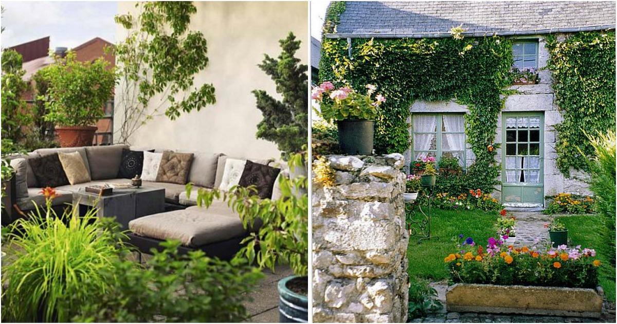 C mo decorar el patio o la terraza con plantas - Como decorar el patio ...