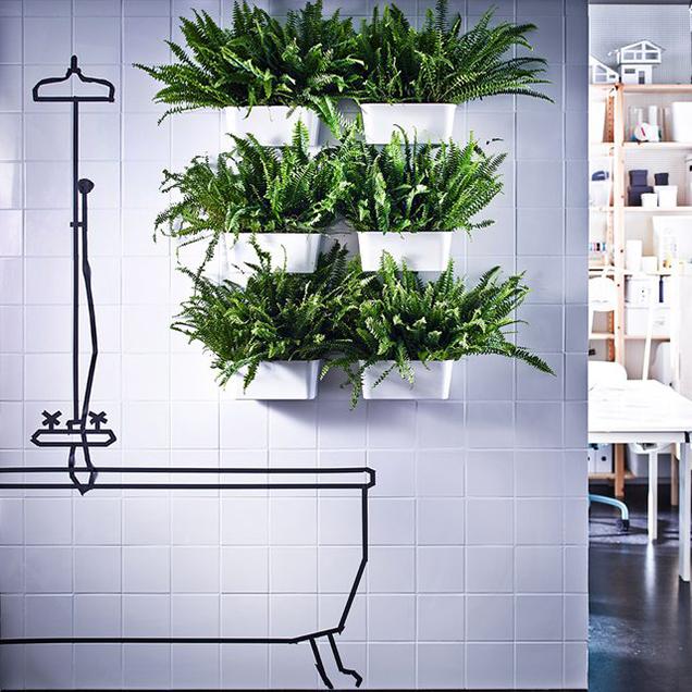 13 maneras de decorar las paredes del ba o - Plantas en el bano ...