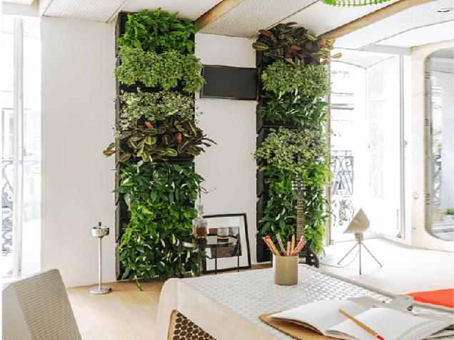 21 espectaculares jardines verticales for Plantas jardin vertical interior