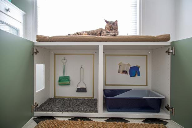 7 Ideas Para Esconder La Caja Sanitaria De Los Gatos